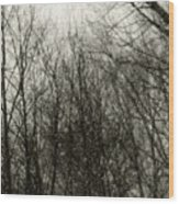 Gray Dawn Wood Print