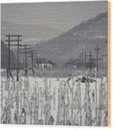 Gray Day Wood Print