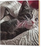 Gray Tabby With White Quilted Throw Wood Print