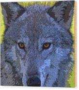 Gray Wolf Portrait Wood Print