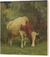 Grazing Cow Wood Print