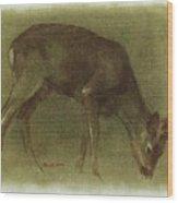 Grazing Roe Deer Oil Painting Wood Print