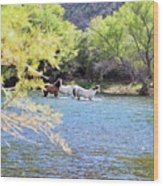 Grazing Salt River Horses Wood Print