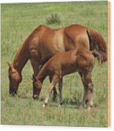 Grazing Together Wood Print
