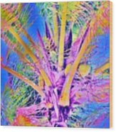 Great Abaco Palm Wood Print