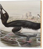 Great Auk Wood Print