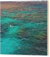 Great Barrier Reef 2542 Wood Print