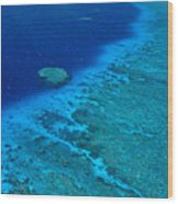 Great Barrier Reef Wood Print