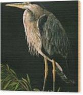 Great Blu Heron Wood Print