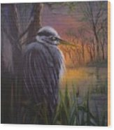 Great Blue At Sunset Wood Print