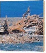 Great Blue Driftwood Wood Print