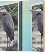 Great Blue Heron - Gently Cross Your Eyes And Focus On The Middle Image Wood Print