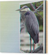 Great Blue Heron - Red-cyan 3d Glasses Required Wood Print
