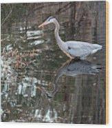 Great Blue Heron And Reflection IIi Wood Print