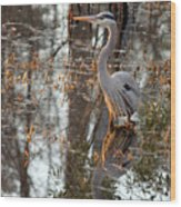 Great Blue Heron And Reflection Wood Print