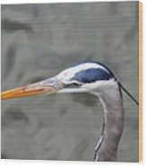 Great Blue Heron At  Morikami Gardens  Wood Print