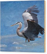 Great Blue Heron  Wood Print by Betty LaRue