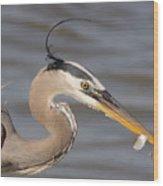 Great Blue Heron Gets Twofer Wood Print