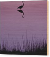 Great Blue Heron IIi Wood Print