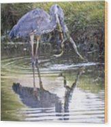 Great Blue Heron Vs Huge Frog Wood Print