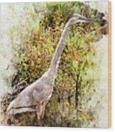 Great Blue Heron W C Wood Print