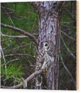 Great Camo Wood Print
