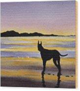 Great Dane At Sunset Wood Print