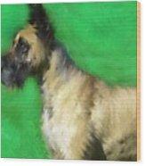 Great Dane Portrait  Wood Print
