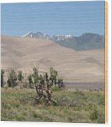 Great Dunes Trifective Range  Wood Print