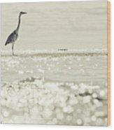 Great Egret Aka Great White Grey Heron In Maldives Wood Print