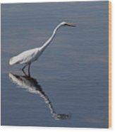 Great Egret Wood Print by April Wietrecki Green