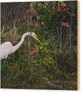 Great Egret In The Garden Wood Print
