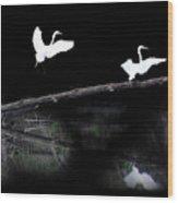 Great Egret Montage Wood Print