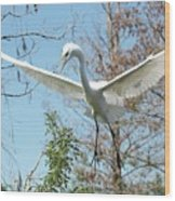 Great Egret Over The Treetops Wood Print