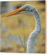 Great Egret Profile Wood Print