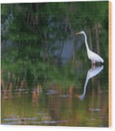 Great Egret Summer Pond Wood Print