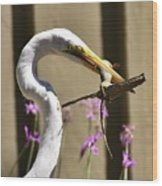 Great Egret With Lizard Who Is Holding Onto Wood Wood Print