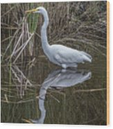 Great Egret With Reflection Wood Print