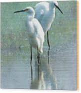 Great Egrets Wood Print