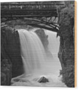 Great Falls In  Paterson Nj Wood Print