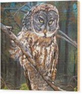 Great Grey Owl 2 Wood Print