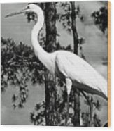 Great Heron Wood Print
