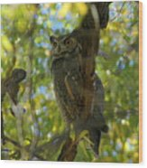 Great Horned Majesty Wood Print