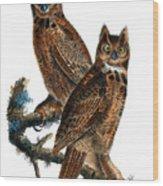 Great Horned Owl Audubon Birds Of America 1st Edition 1840 Royal Octavo Plate 39 Wood Print