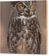 Great Horned Owl Digital Oil Wood Print