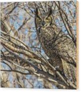 Great Horned Owl In Cottonwood Tree Wood Print