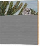 Great Horned Owl - Owl On The Rocks Wood Print