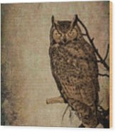 Great Horned Owl With Textures Wood Print