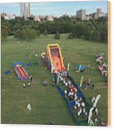 Great Inflatable Race Wood Print