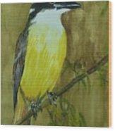 Great Kiskadee Wood Print